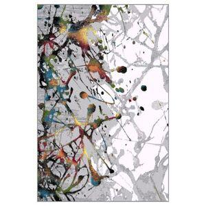 Sconto Koberec KOLIBRI 2 viacfarebná, 80x150 cm